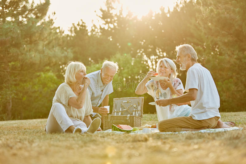 Group of seniors in the park. In a picnic in summer having fun royalty free stock images