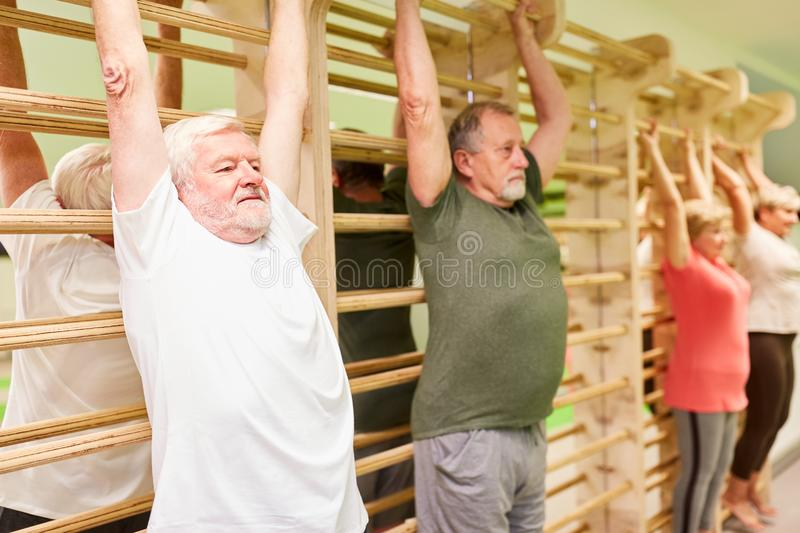 Group of seniors stretching on the wall bars. As back training in physiotherapy royalty free stock photos