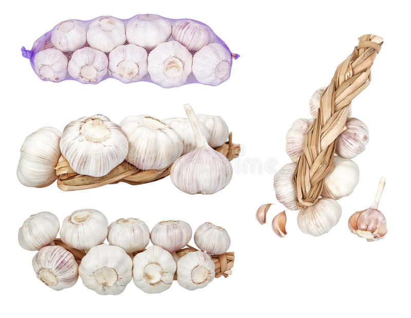 Group set of images heads of garlic. On a white background royalty free stock photos
