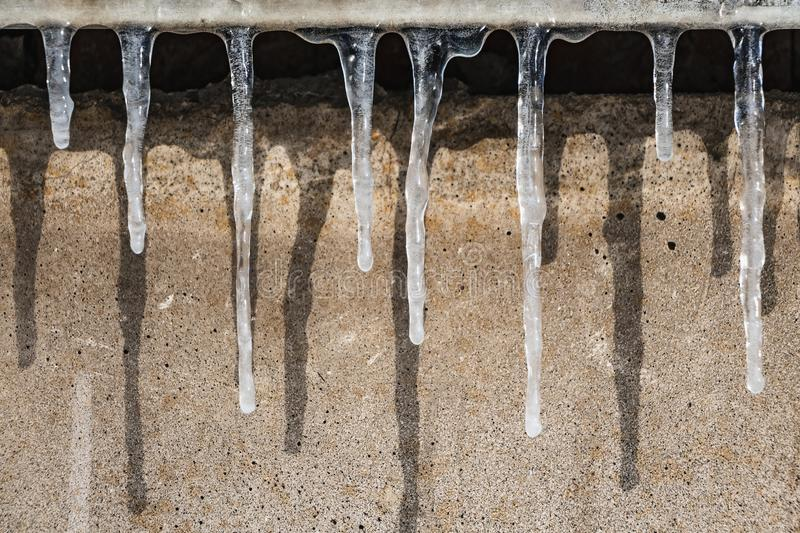 A group of sharp white transparent icicles with shadows is hanging down from the gray roof with ice of a building on a gray wall. Background in winter stock photography