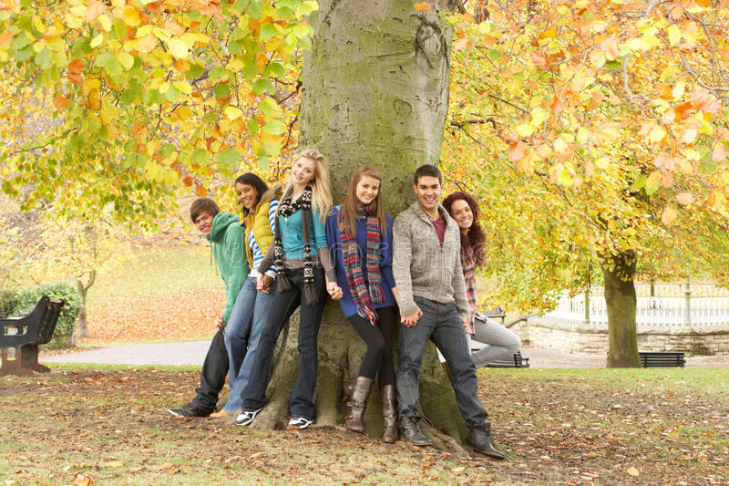 Download Group Of Six Teenage Friends Leaning Against Tree Stock Image - Image of leaning, outside: 13671531