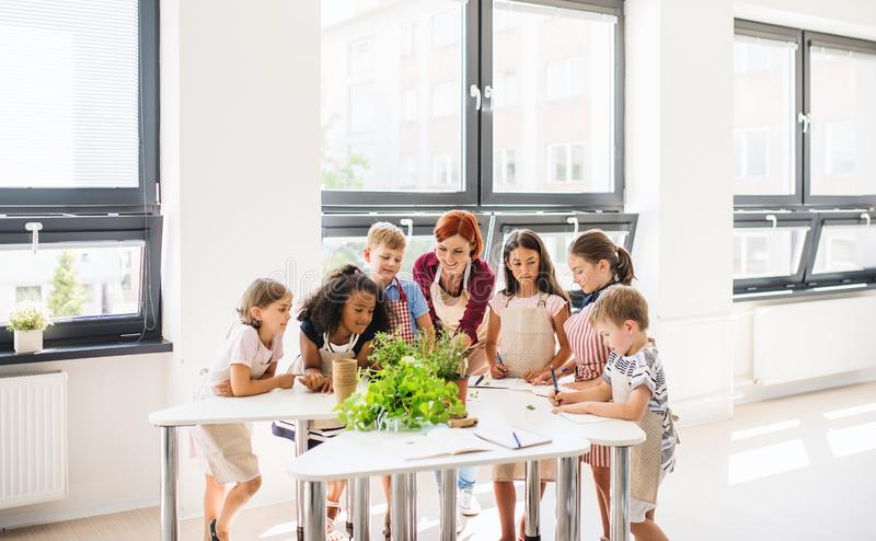 A group of small school kids with teacher standing in circle in class, planting herbs. royalty free stock photos