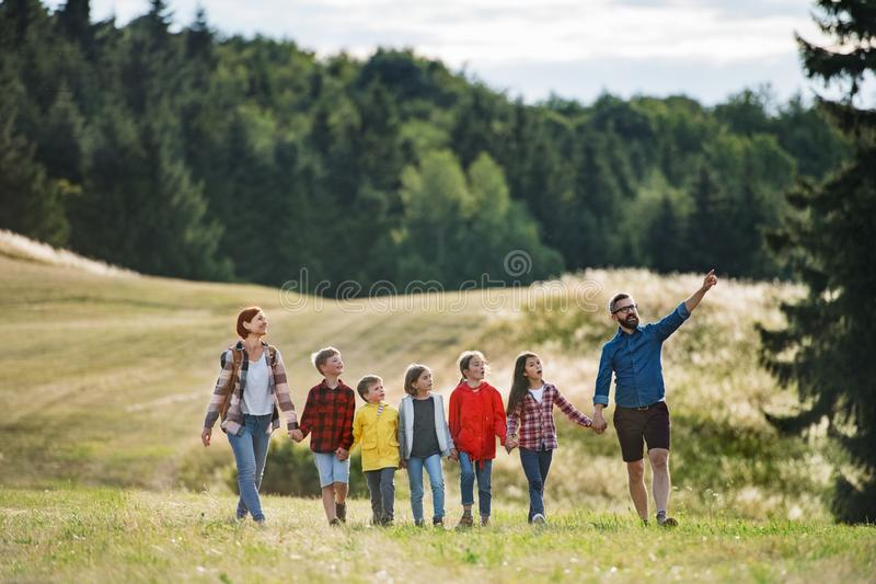 Group of school children with teacher on field trip in nature, walking. stock images
