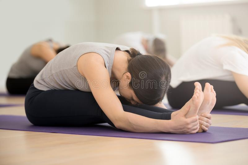 Group of sporty people practicing yoga, Seated forward bend pose. Yogi women and a group of young sporty people practicing yoga lesson, doing paschimottanasana stock image