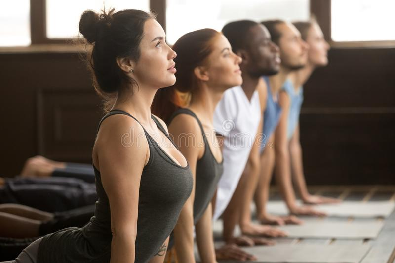 Group of sporty people in upward facing dog exercise. Group of young sporty afro american and caucasian people practicing yoga lesson, stretching in upward stock photography