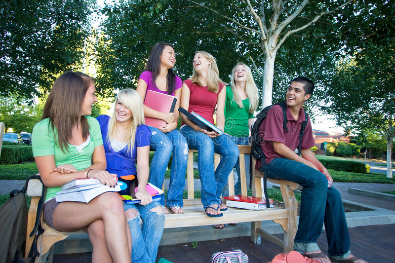 Download Group Of Students Royalty Free Stock Photography - Image: 7427797
