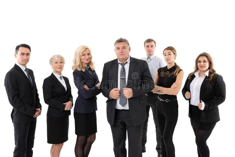 group of successful business people isolated on white stock photos