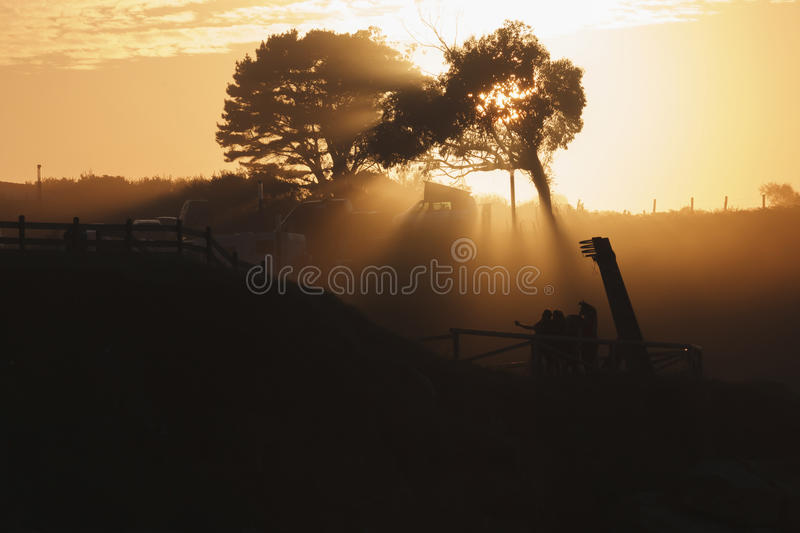 Group at sunset stock photography