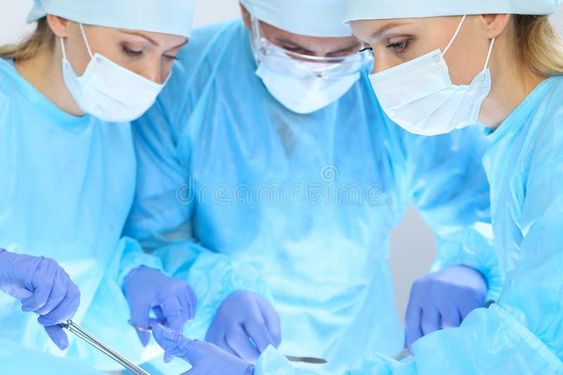 Group of surgeons at work while operating at hospital. Health care and veterinary concept stock image