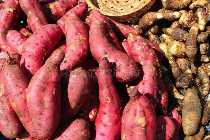 Group sweet potato selling on marker royalty free stock image