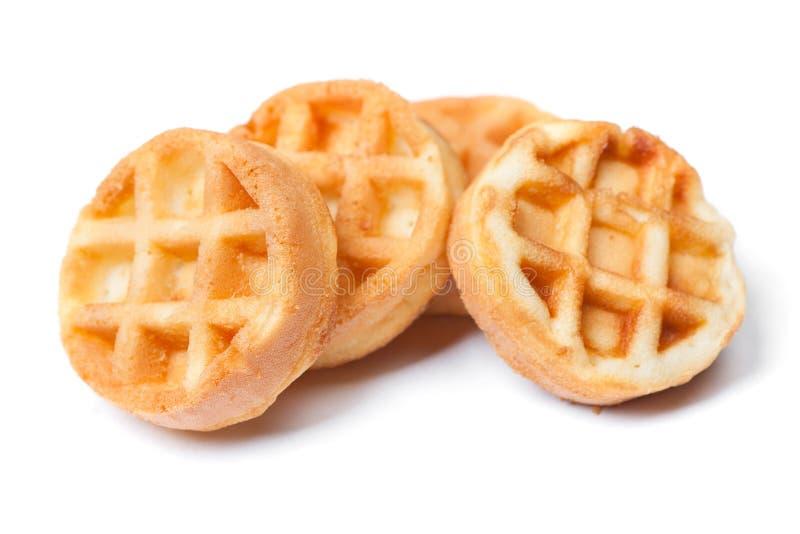 Group of tasty round mini waffles stock image