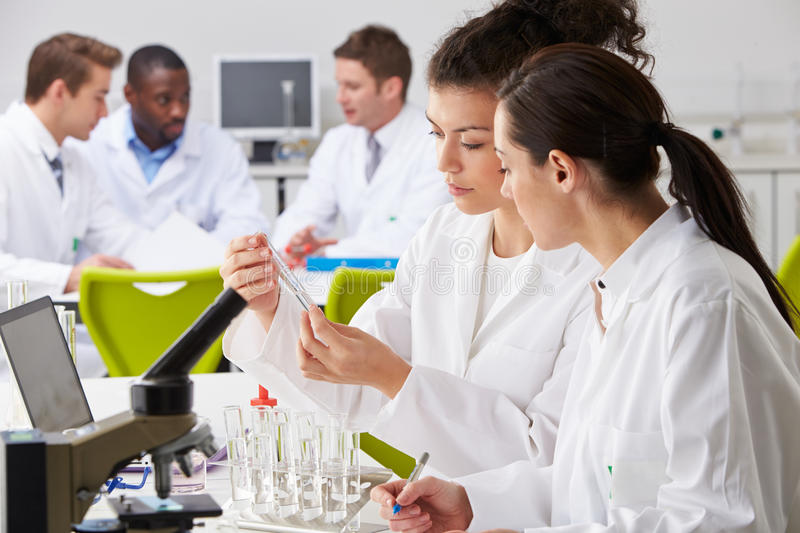 Group Of Technicians Working In Laboratory royalty free stock photo