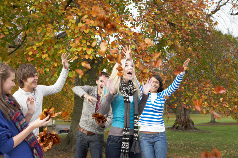 Download Group Of Teenage Friends Throwing Leaves In Autumn Stock Image - Image of caucasian, autumn: 13672131