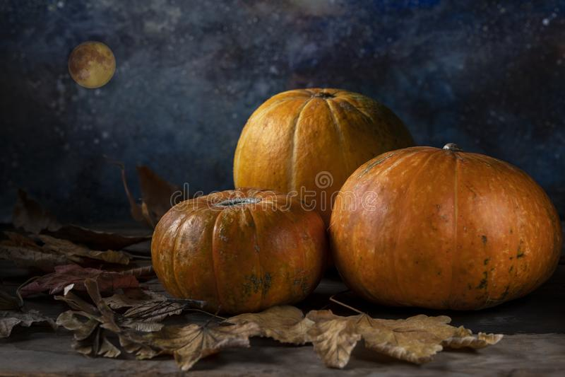 A group of three pumpkins and fallen dry leaves royalty free stock photo
