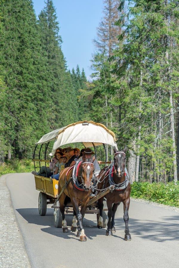 Group of tourists on the horse cart on the road to Morskie Oko lake literally `Sea Eye`, High Tatra Mountains near Zakopane, stock photography