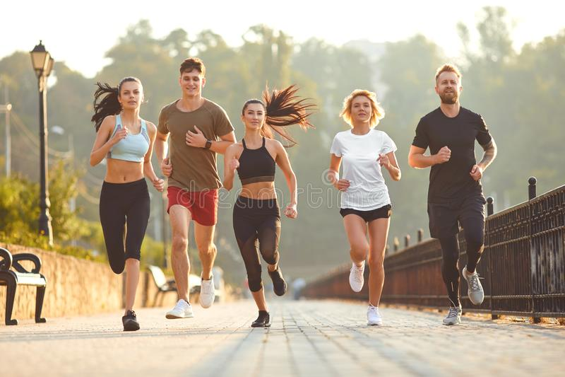 Group training of people at dawn in the park. stock photos