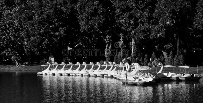 Group of treadle boats royalty free stock images