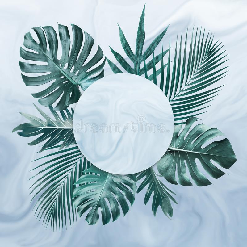 Group of tropical leaves on marble background.Copy space.Nature and summer concept vector illustration