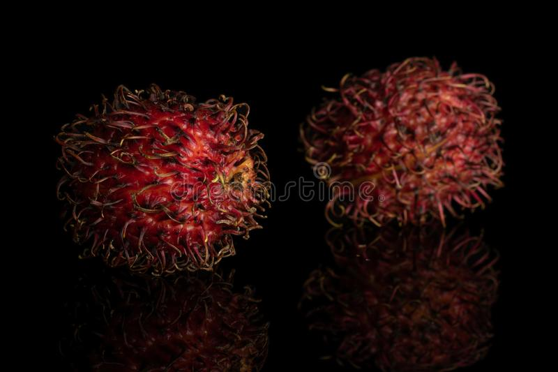 Fresh red rambutan isolated on black glass. Group of two whole fresh red rambutan fruit isolated on black glass royalty free stock photo