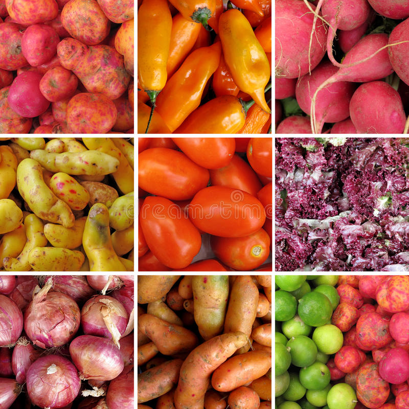 Group Of Vegetables Royalty Free Stock Image