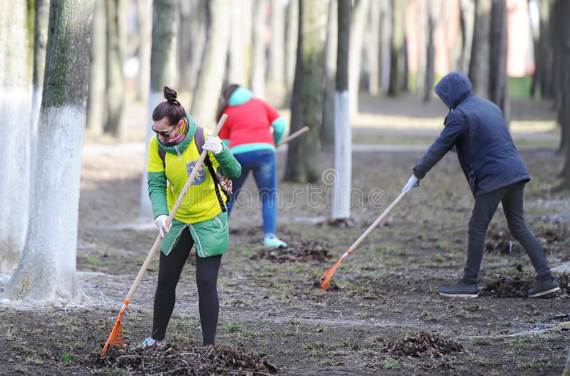 Group of the volunteers picking up litter in the park stock photos