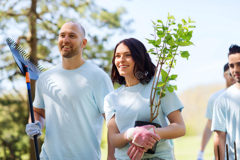 Group of volunteers with trees and rake in park stock photography