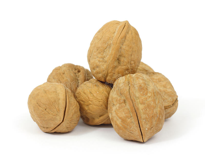 Group Of Walnuts Royalty Free Stock Images