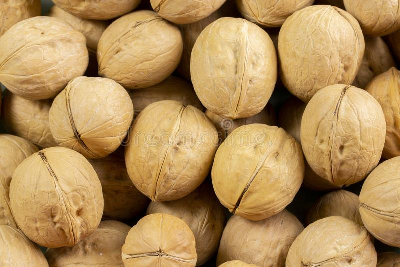 A group of walnuts in the shell a lot, the background wallpaper close-up. Nuts brown beige structured walnut shell texture. Healthy Protein Meal Snack stock images