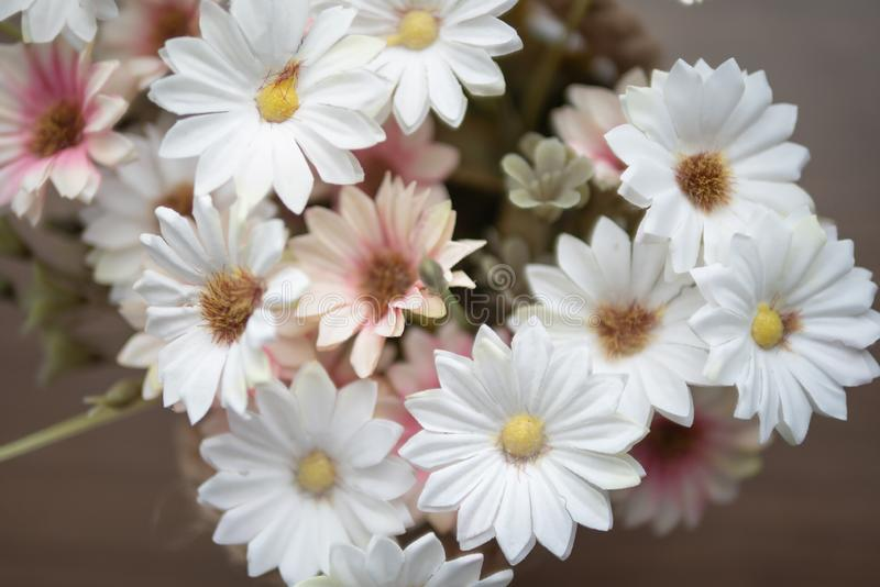 Group white and pink flowers on the wooden table. Close up white and pink flowers on the wooden table with yellow pollen. Top view blooming of fake flower stock photos