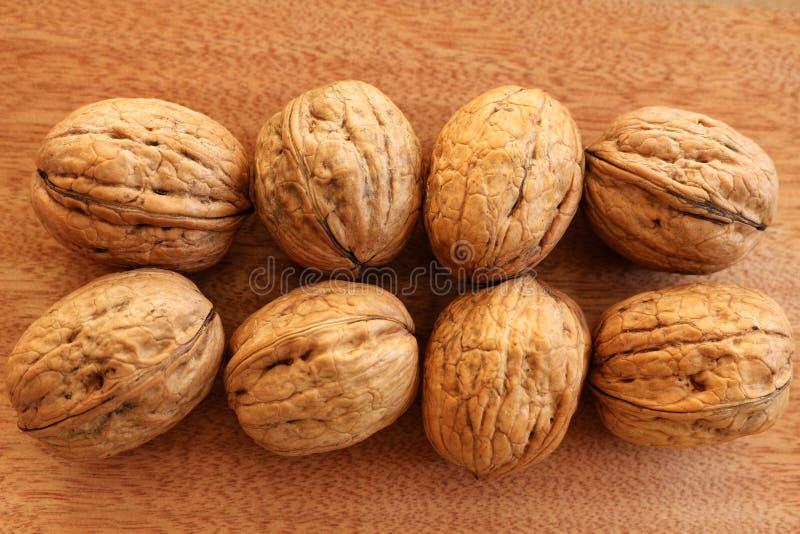 Whole Walnuts stock image