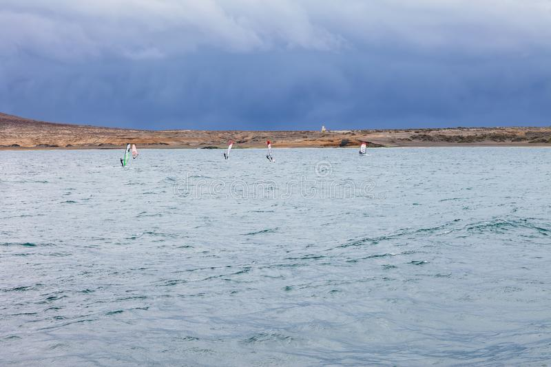 Group of windsurfers rides in atlantic ocean. Fuerteventura, Canary islands. Active vacation royalty free stock photography