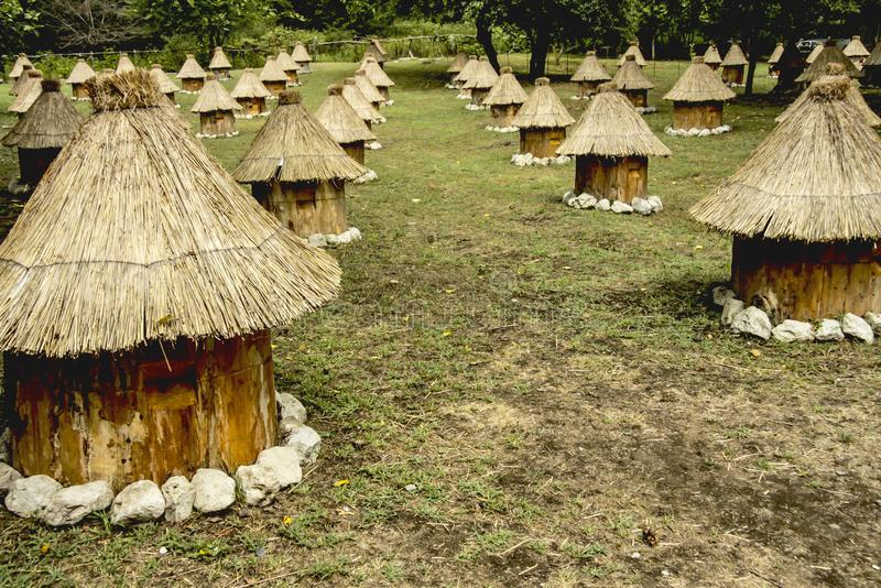 Group wooden bee hives with thatched roof. Glade in outdoor, group wooden bee hives with thatched roof of honey bees on a meadow, located in several rows stock images