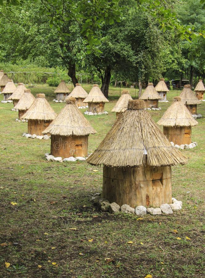 Group wooden bee hives with thatched roof. Glade in outdoor, group wooden bee hives with thatched roof of honey bees on a meadow, located in several rows royalty free stock photos