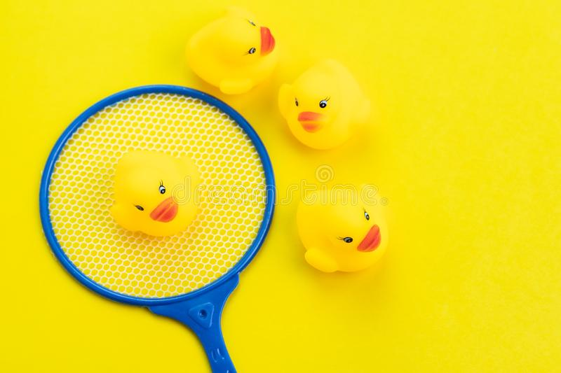 Group of yellow cute rubber ducks with choosen one in cute small landing net on solid yellow background using as searching or stock photography