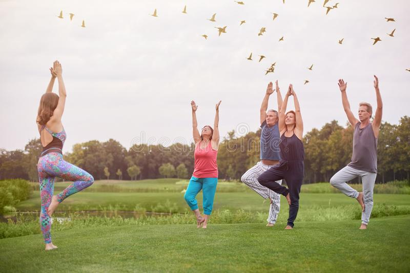 Group yoga exercise outdoor. stock photography