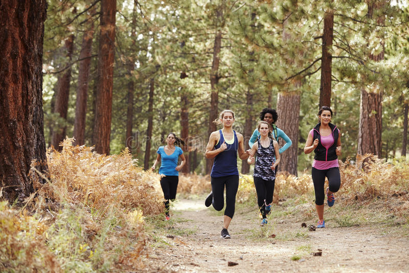 Group of young adult women running in a forest stock image