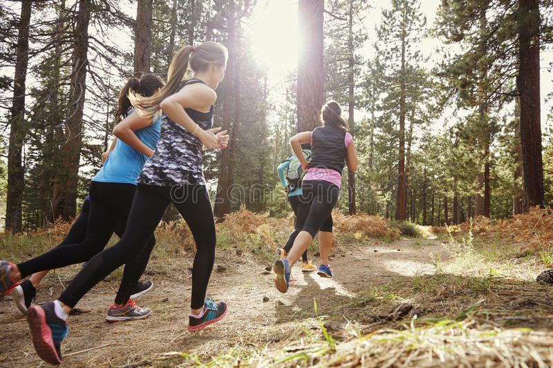 Group of young adult women running in a forest, back view royalty free stock photography