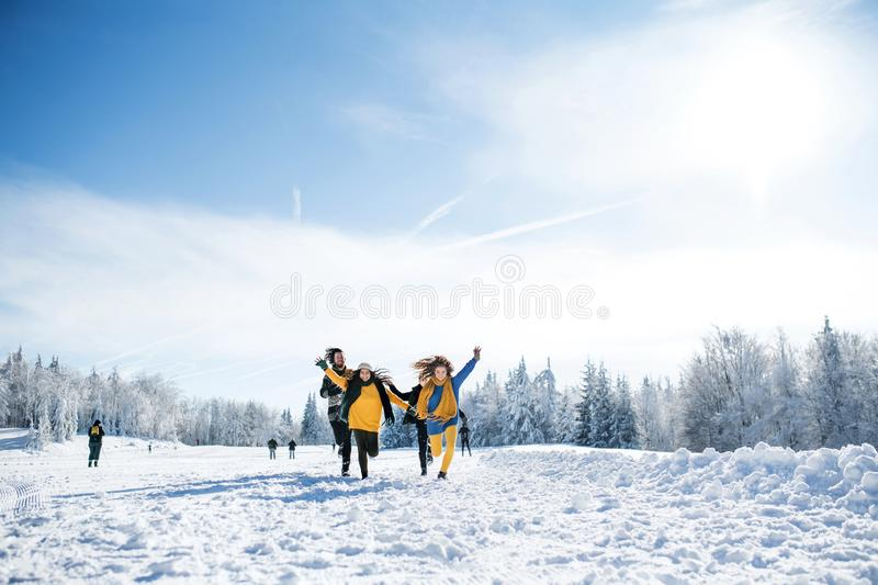 Group of young friends on a walk outdoors in snow in winter forest, running. stock photo