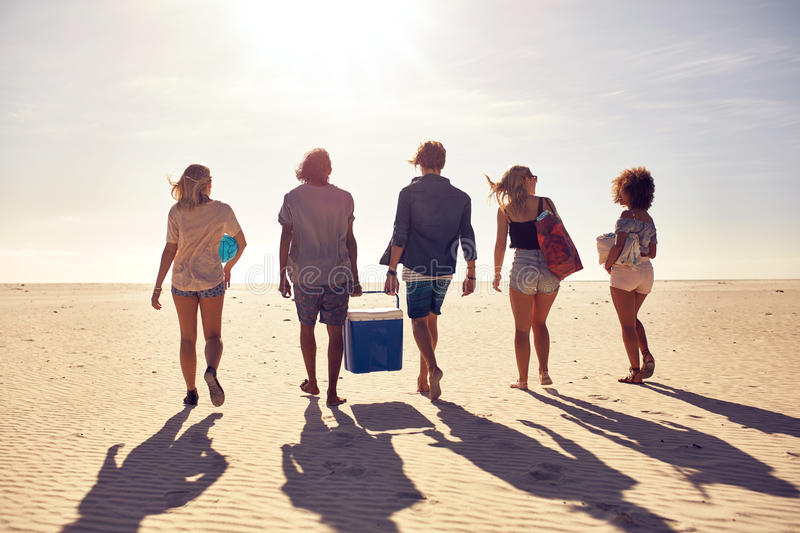 Group of young people on the beach carrying a cooler box stock images