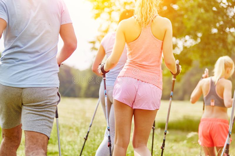 Group of young people nordic walking stock photography