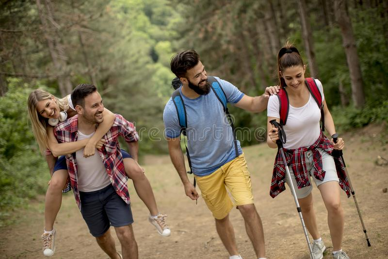 Group of young people are hiking in mountain. At spring day royalty free stock photos