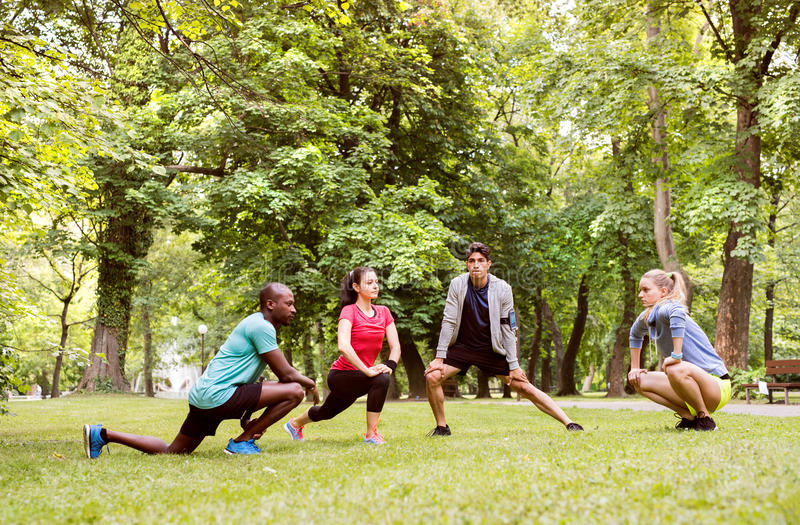 Group of young runners stretching and warming up in park. Group of young runners in nature warming up and stretching royalty free stock photo