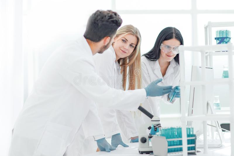 Group of young scientist discussing research results royalty free stock images