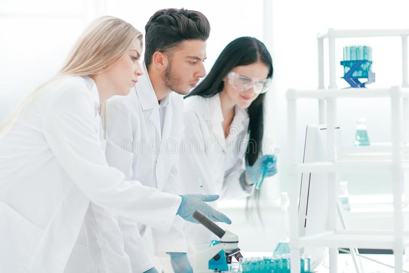 Group of young scientist discussing something in their lab royalty free stock photography