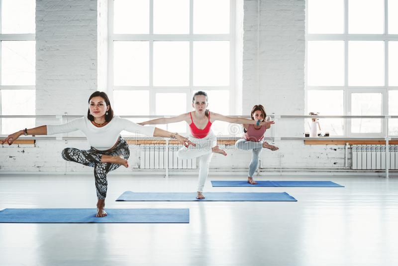 Group of young slim woman practice yoga exercise indoor class. People doing fitness together. Healthy lifestyle. Group of young slim women practice yoga exercise royalty free stock photo