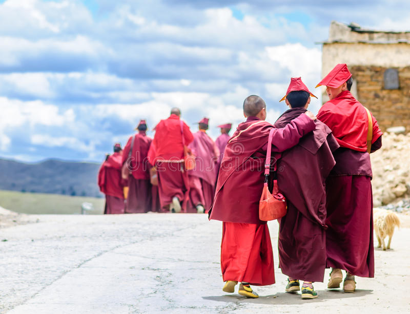 Group of Young tibetan Monks in Sichuan royalty free stock photography