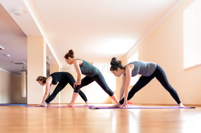 A group of young women doing yoga in the classroom. The concept of sports lifestyle, health and yoga practice royalty free stock image
