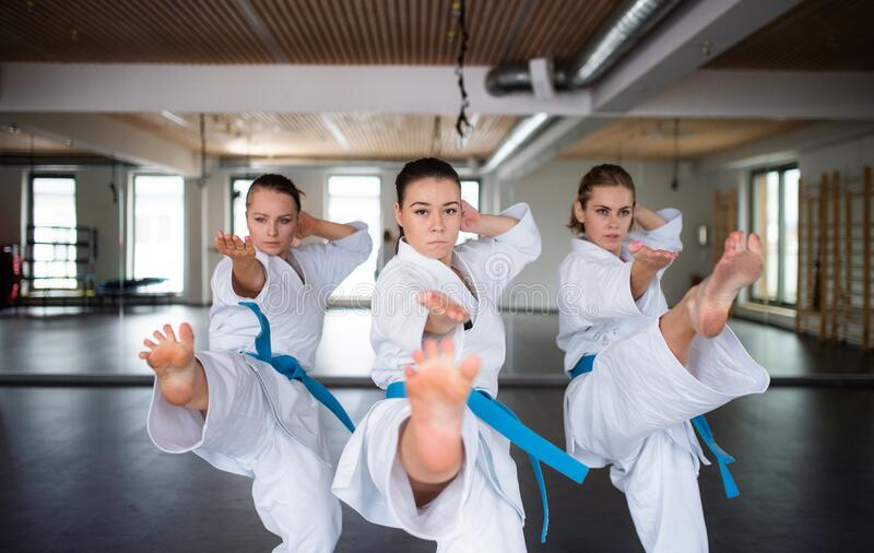 Group of young women practising karate indoors in gym. A group of young women practising karate indoors in gym royalty free stock photography