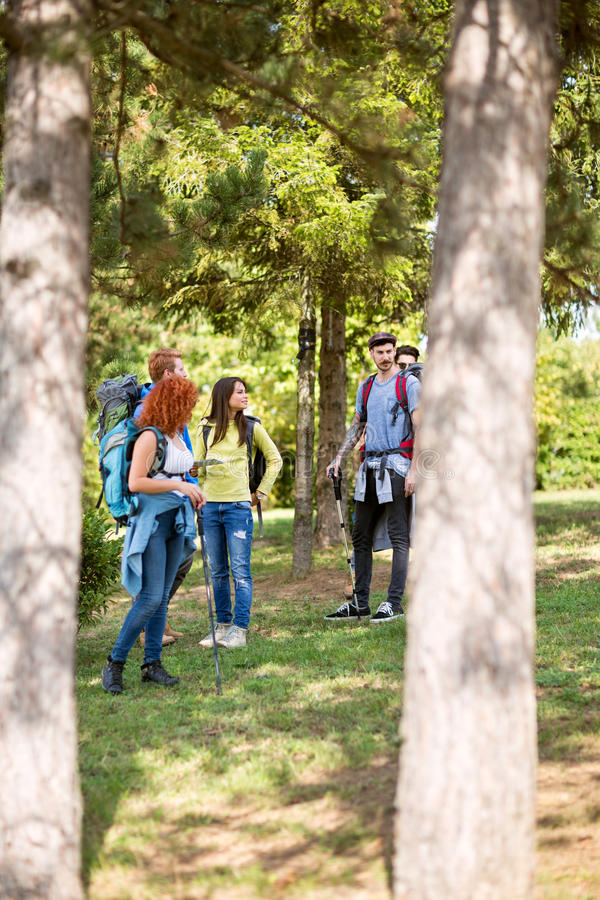 Group of youngsters in woods hiking royalty free stock images