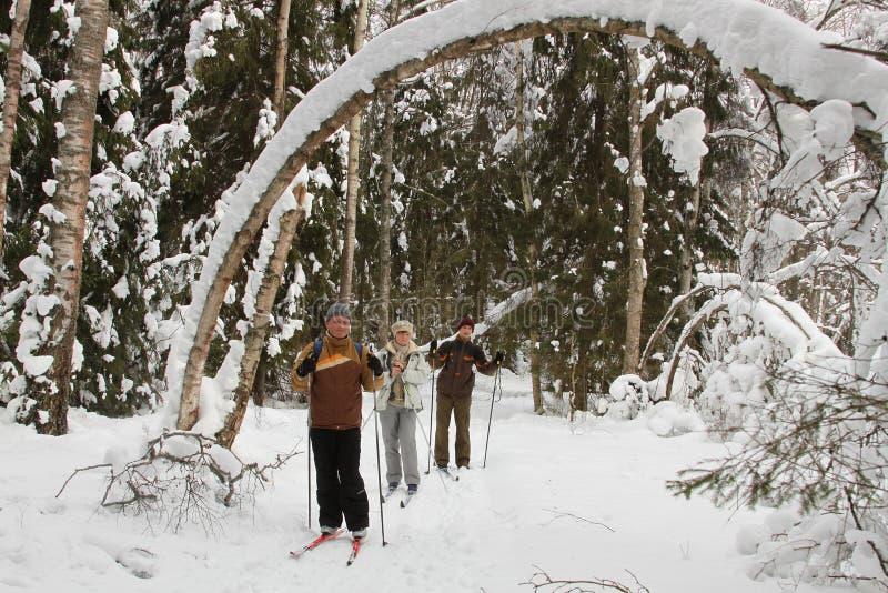 Groupe actif de skieurs photos libres de droits